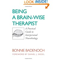 Being a Brain-Wise Therapist: A Practical Guide to Interpersonal Neurobiology (Norton Series on Interpersonal...