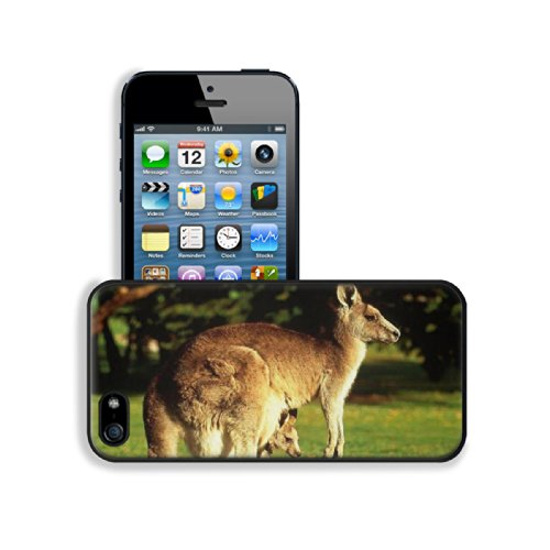 Animal Wildlife Kangaroo Mother Baby Australia Outback Apple Iphone 5 / 5S Snap Cover Premium Leather Design Back Plate Case Customized Made To Order Support Ready 5 Inch (126Mm) X 2 3/8 Inch (61Mm) X 3/8 Inch (10Mm) Luxlady Iphone_5 5S Professional Case front-649611