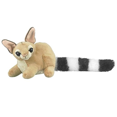Ringtail Cat Stuffed Animal Plush Stuffed Animal
