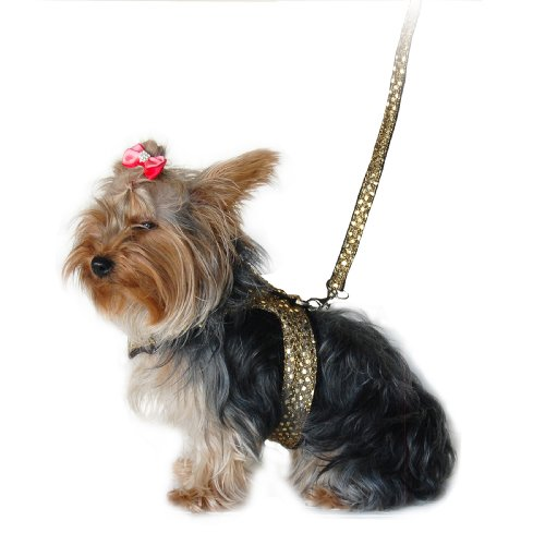 Anima Gold Sparkle Harness And Leash Set, X-Small