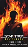 Forged in Fire (Star Trek: Excelsior) (1416547169) by Martin, Michael A.