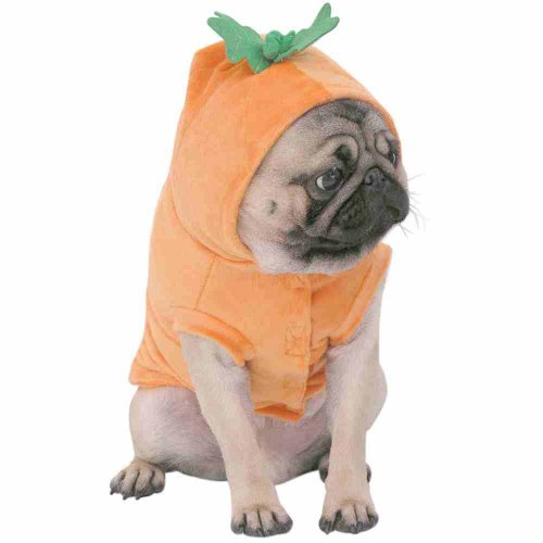 Capelli New York Pet Costume Halloween-Pumpkin