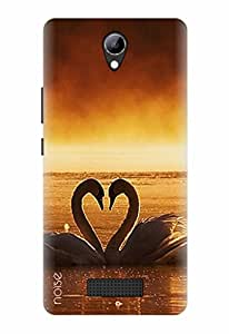 Noise Designer Printed Case / Cover for Lyf Wind 3 / Nature / Love