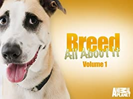 Breed All About It Season 1