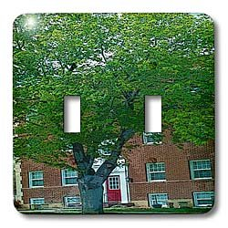 Jos Fauxtographee Realistic - A Brick Building in Cedar City, Utah With a Red Door and a Huge Green Tree In Front of It - Light Switch Covers - double toggle switch