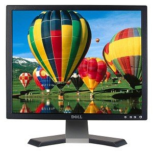 """19"""" Dell E196Fpb Lcd Monitor (Black)"""