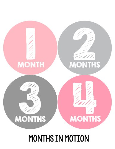 Months in Motion 106 Monthly Baby Stickers Baby Girl Milestone Photo Prop