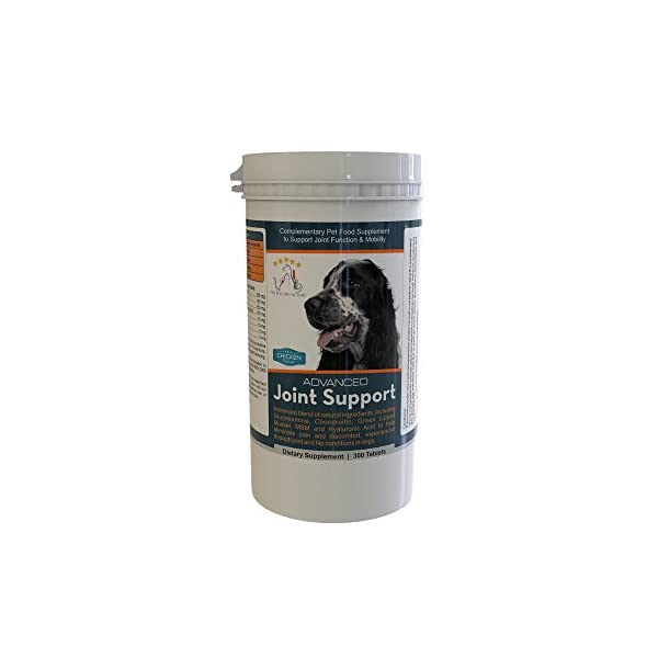 Advanced Joint Support Supplement For Dogs, With Powerful Glucosamine,  Chondroitin, Green Lipped Mussel, MSM, Curcumin & Hyaluronic Acid, 300  Tablets,