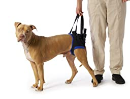 Walkabout Back Pet Harness Large