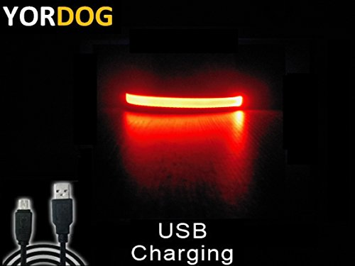 mad-winter-sale-price-while-stocks-last-new-premium-quality-super-bright-pu-leather-led-dog-night-sa