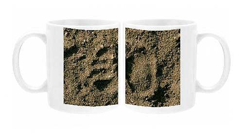 Photo Mug Of Tasmanian Devil - Spoor In Sand; Animals Often Scavenge The Shoreline For