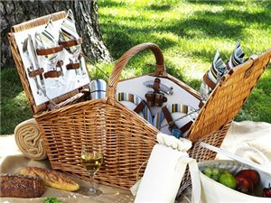 Santa Cruz Picnic Basket for Four with Picnic Blanket