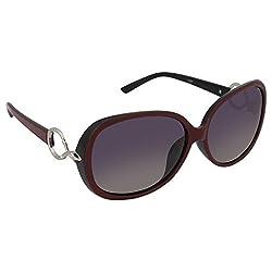 AAO+ Polarized Ladies Sunglasses-Balang030