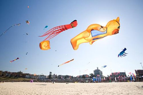 Large Assorted Kites over White Sand Beach. - 24