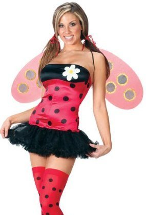 Fantasy Lady Bug Sexy Adult Costume