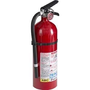 Kidde 21005779 Pro 210 Fire Extinguisher, ABC, 160CI