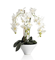 Artificial Large White Orchid in Pot