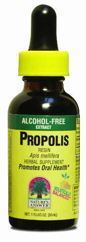 Nature's Answer Propolis, Alcohol Free 1 Fl Oz