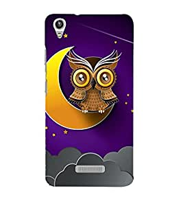 Clipart Owl Wallpaper 3D Hard Polycarbonate Designer Back Case Cover for Lava Iris Pixel V1