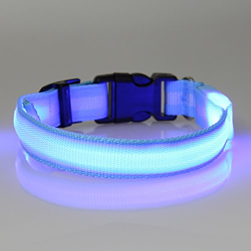 Dog Safety Collar, Led, Flashing And Solid, Nylon - Free Extra Batteries - Large And Small Dogs - Free Shipping (Blue, Large)