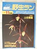 自然と野生ラン 1995年 11月号 [雑誌]