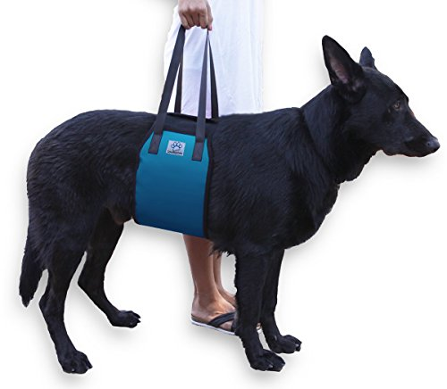 XL Blue Dog Lift Support Harness for canine aid - Lifting Older K9 with handle for Injuries, Arthritis or Weak hind legs & Joints. Large / X-large breed Assist Sling for mobility & Rehabilitation (Lifting Dog Harness compare prices)
