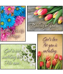 buy Petals & Prayers - Scripture Greeting Cards - Niv - Boxed - Praying For You