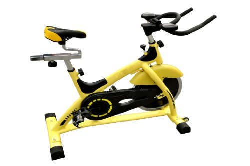 New Indoor Cycling Bike Stationary Cycle Trainer Upright Exercise FlyWheel J01