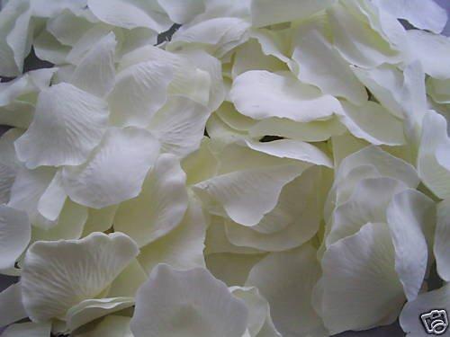 500-ivory-silk-quality-rose-petals-confetti-wedding