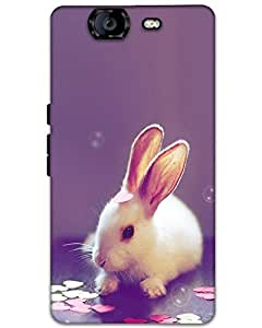 Micromax Canvas Knight A350 Back Cover Designer Hard Case Printed Cover