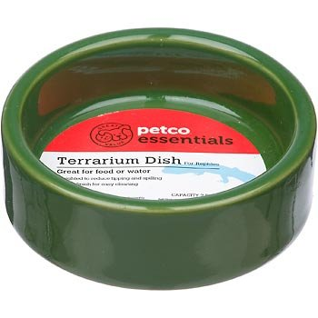 Petco Moss Green Ceramic Terrarium Dish for Reptiles