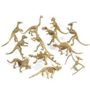 Rhode Island Novelty Assorted Dinosaur Fossil Skeleton 5-6