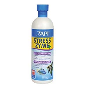 API Stress Zyme, 16-Ounce