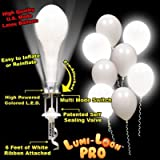Lumi-Loons Balloon Lights White Balloons White Lights - 10 Pack