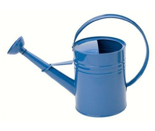 Houston international 8582e b 1 gallon steel watering can blue - Gallon metal watering can ...