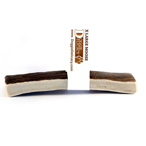 Doggie Delicacy All Natural Shed Premium Dog Treat and Chew, Moose Antler Original 6-Inch, XLarge