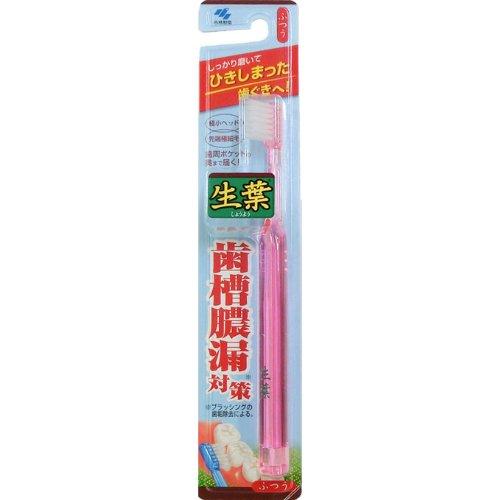 小林 生葉歯ブラシ ふつう 1本