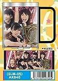 AKB48 ステンレスマグ