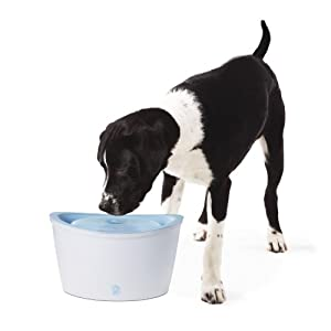 Hagen Dogit Design Fresh and Clear Dog Drinking Fountain, Original