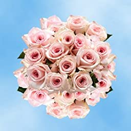 100 Mother\'s Day Flower Specials Online Pink Roses