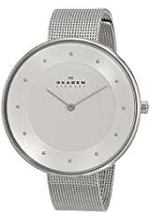 Skagen Women's SKW2140 Gitte Stainless Steel Watch with Steel-Mesh Band