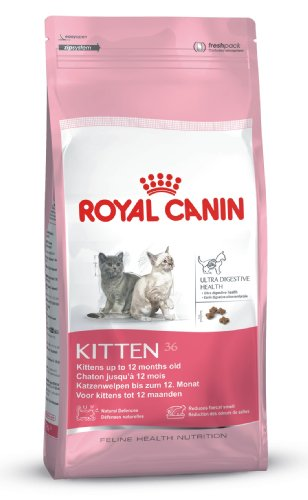 royal canin kitten 36 pas cher. Black Bedroom Furniture Sets. Home Design Ideas