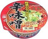 ニュータッチ 凄麺 野菜がどっさり!辛味噌ラーメン 1ケース(12食入)