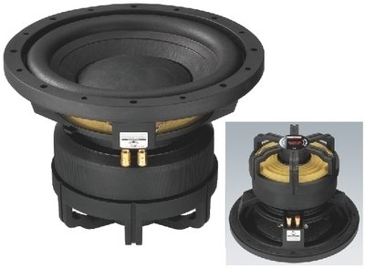 CARPOWER Auto Subwoofer RAPTOR-12 MK2