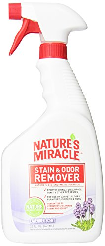 Nature's Miracle Stain & Odor Remover, Lavender Scent, 32-Ounce Spray (5385)