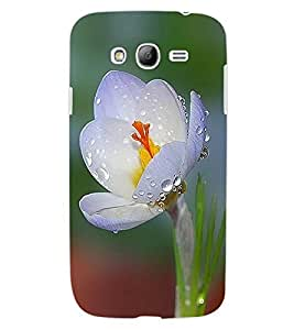 ColourCraft Beautiful Flower Design Back Case Cover for SAMSUNG GALAXY GRAND NEO I9060