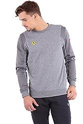 Puma Men's Polyester Sweatshirt (4055262446826_76172504_Small_Medium Gray Heather)