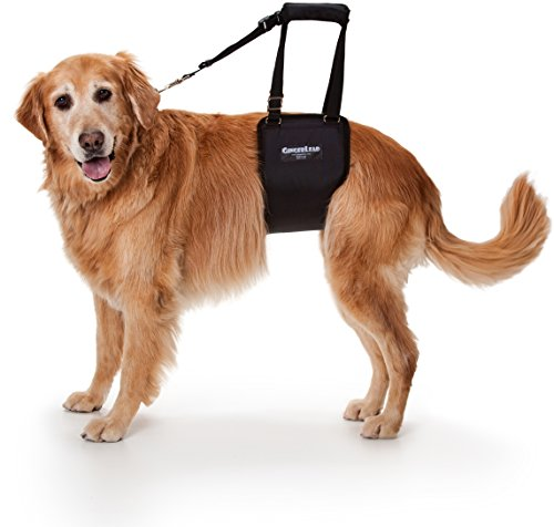GingerLead Dog Support & Rehabilitation Harness - Large Female Sling (Lifting Dog Harness compare prices)
