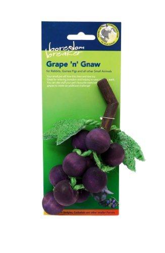 (Boredom Breaker) Grape 'N' Gnaw Small Animal Toy