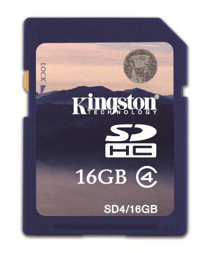 canon-powershot-sx510-hs-scheda-di-memoria-sd-8-gb